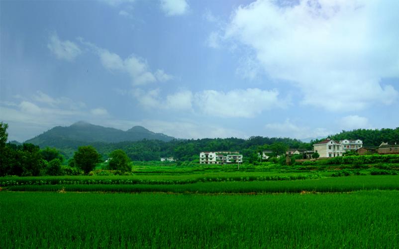 青阳县庙前镇